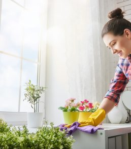 Spring cleaning helps prevent lead dust from accumulating in your home